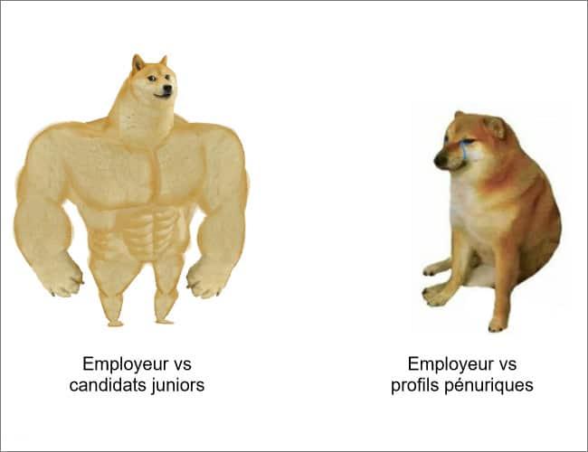 profils pénuriques employeur