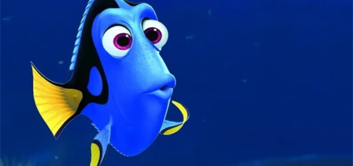 Ghosting Prestataires Dory